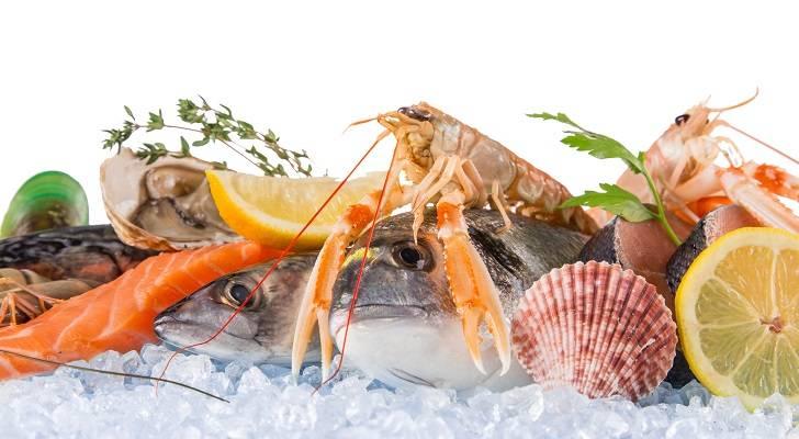Schadstoffbelastung in Fischen & Meerestieren – Teil 2: Aquakultur, Antibiotika & Gütesiegel